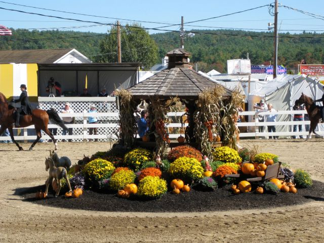Horse show ring