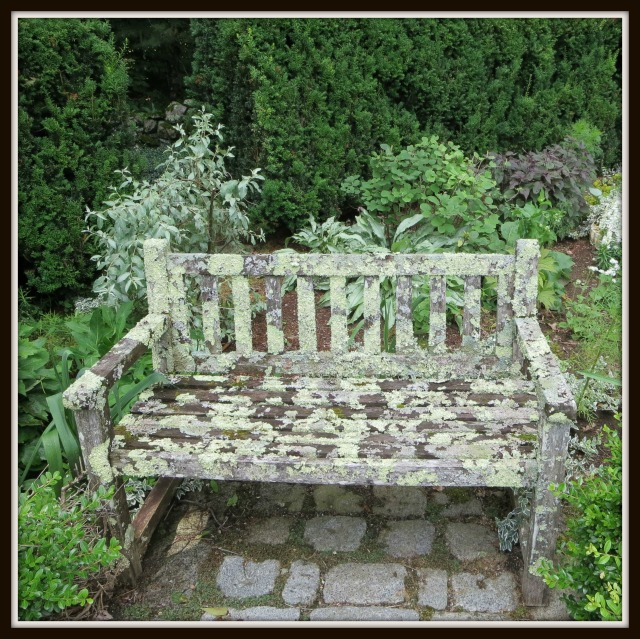 Lichen-covered bench, Bedrock Gardens, Lee, NH