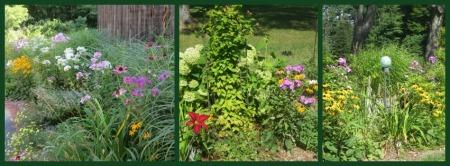 Phlox Garden Collage