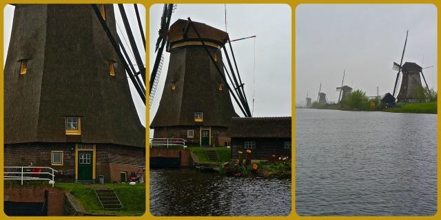 WindmillCollage