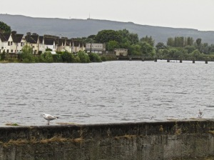 Ireland Limberick River