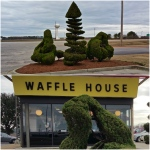 collage_fotorwafflehouse